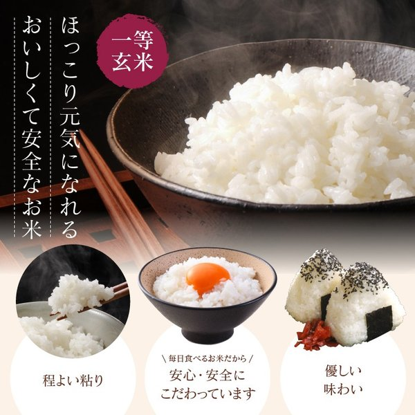 お米 10Kg 福島県産 ひとめぼれ 送料無料 無洗米 精米 令和元年産 一等米|oisiiokomedesu|07
