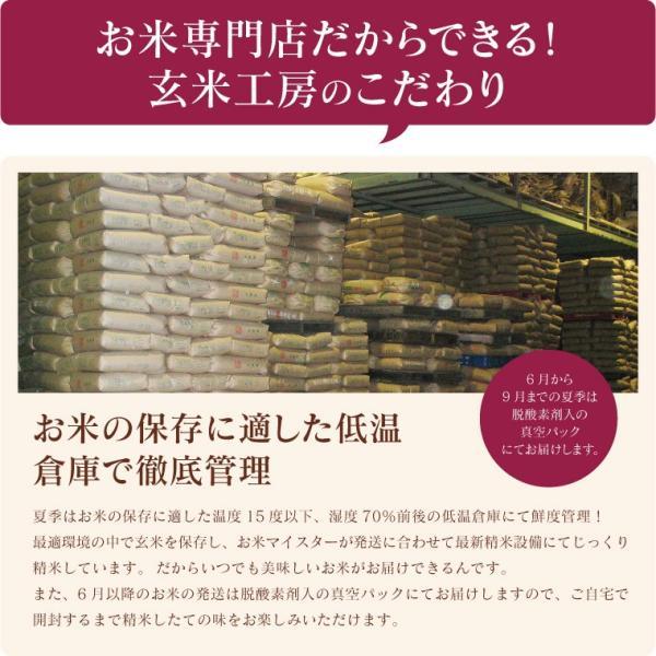 お米 10Kg 福島県産 ひとめぼれ 送料無料 無洗米 精米 令和元年産 一等米|oisiiokomedesu|09
