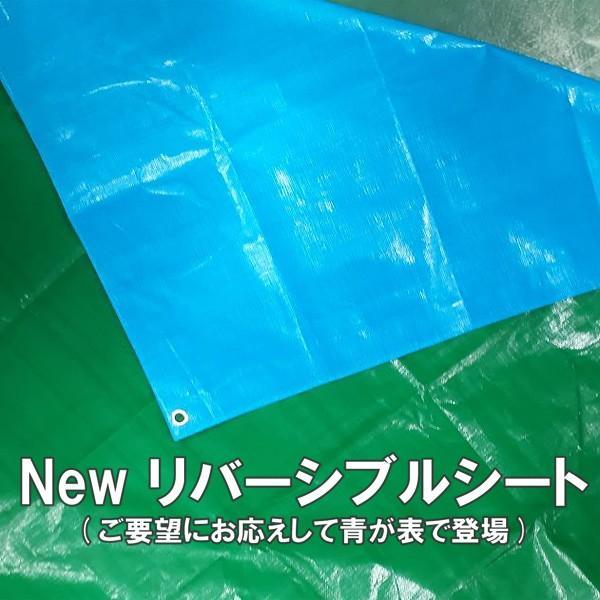 ブルーシート #3000 厚手防水 サイズ3.6m×5.4m(40枚入) 緑&青|okacho-store|02