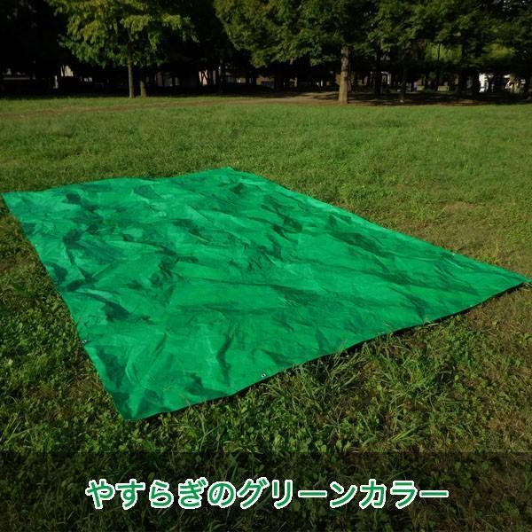 ブルーシート #3000 厚手防水 サイズ3.6m×5.4m(40枚入) 緑&青|okacho-store|05