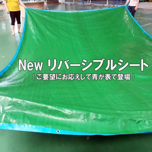 ブルーシート 厚手 防水 規格 3000 カラー 青&緑 5.4m×7.2m 1枚|okacho-store