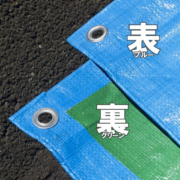 ブルーシート #3000 厚手防水 サイズ5.4m×7.2m 1枚 緑&青|okacho-store|03