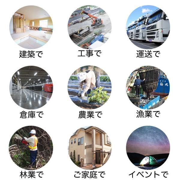 ブルーシート #3000 サイズ10m×10m(4枚入) 厚手防水 緑&青|okacho-store|05
