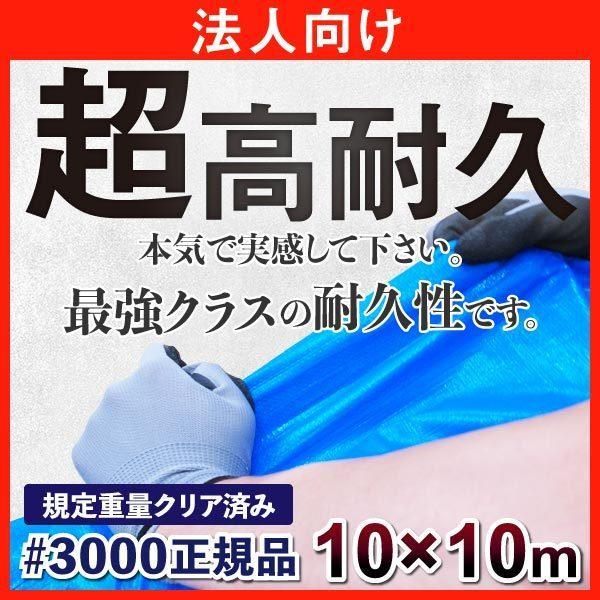 ブルーシート #3000 厚手 防水  耐久性 10m×10m 正規品 法人 団体向け ハトメ