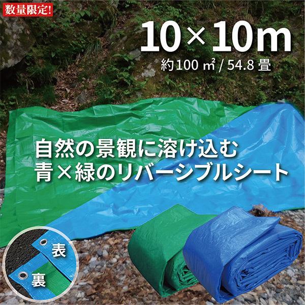 ブルーシート グリーン 数量限定 特別価格 色 防水 厚手 #3000 10m×10m カラー お得 青&緑 リバーシブル ハトメ