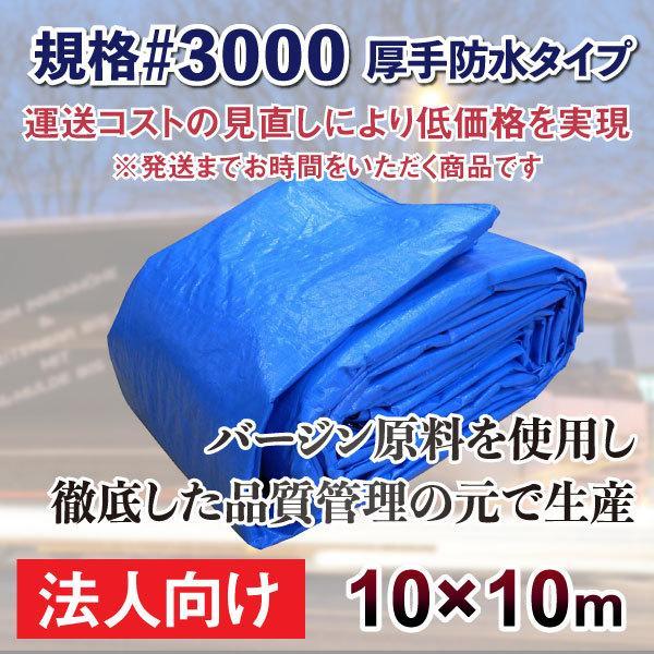 ブルーシート 厚手 防水 #3000規格 サイズ10m×10m 1枚 エコノミー 法人 商店 団体向け