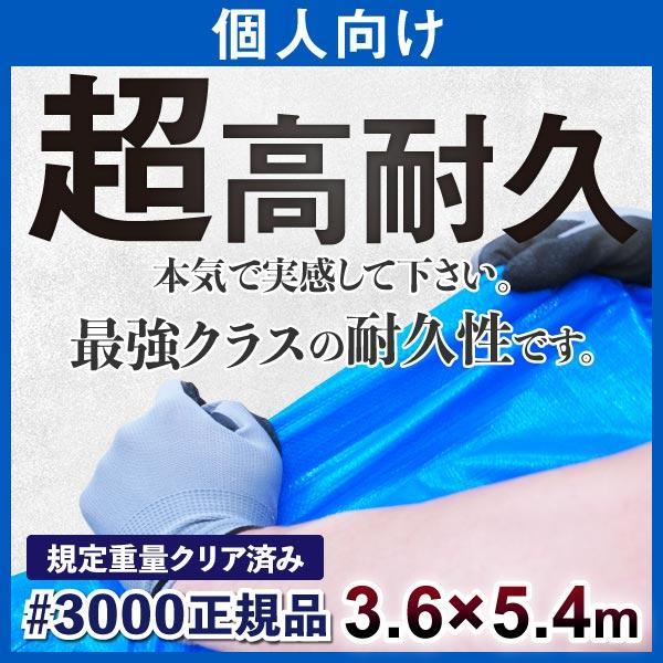 ブルーシート 厚手 防水 3000 規格 3.6m×5.4m 個人向け ハトメ付 サイズ 1枚 防災 養生 レジャー 台風