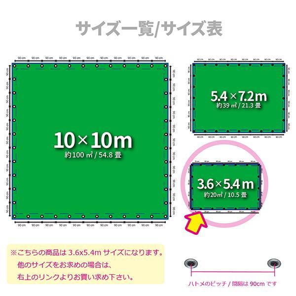 ブルーシート 防水 厚手 タープ 3000 3.6m×5.4m 青&緑 1枚|okacho-store|02