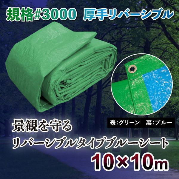 ブルーシート 防水 厚手 #3000規格 サイズ10m×10m カラー 緑&青1枚