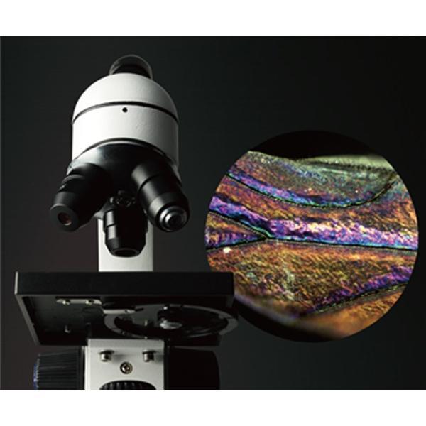 Vixen 顕微鏡 学習用顕微鏡 ミクロナビシリーズ ミクロナビS-800 21234-7