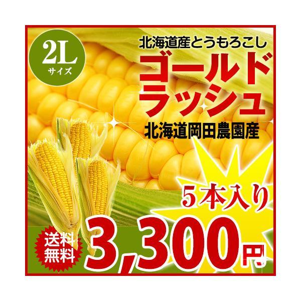 とうもろこしゴールドラッシュ 北海道産トウモロコシ朝採れ直送(2Lサイズ×5本セット)