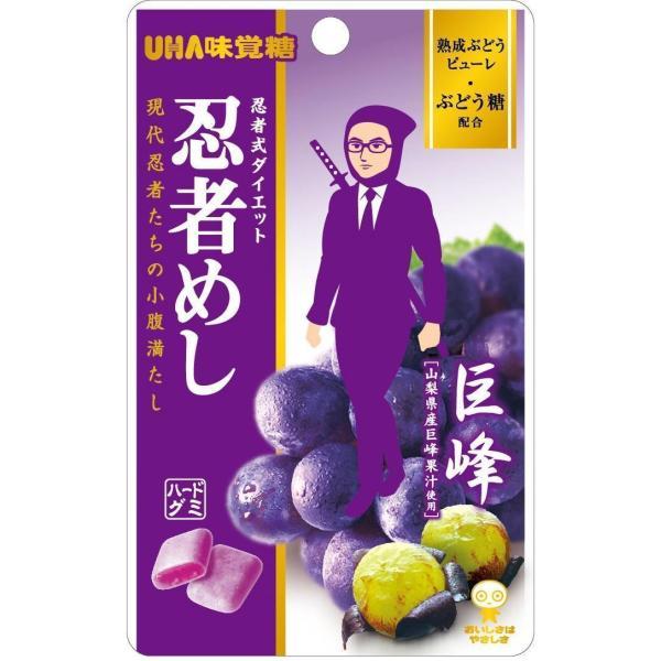 UHA味覚糖 忍者めし 巨峰味 20g×10袋