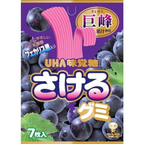 味覚糖 さけるグミ 巨峰 7枚×10袋