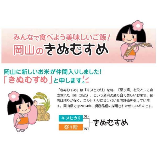 米 お米 10kg きぬむすめ 30年岡山産 (5kg×2袋) 送料無料|okaman|03