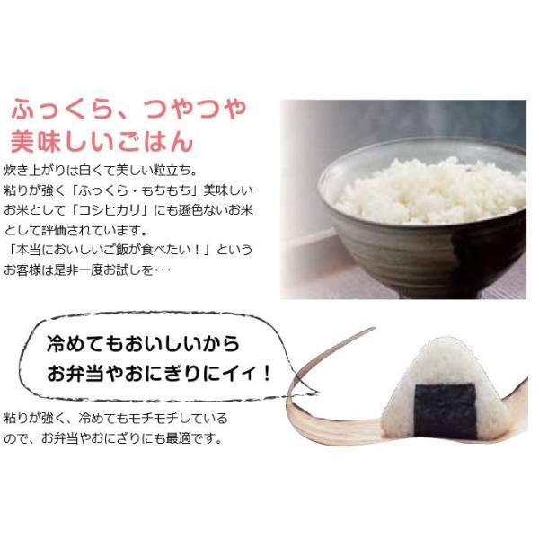 米 お米 10kg きぬむすめ 30年岡山産 (5kg×2袋) 送料無料|okaman|04