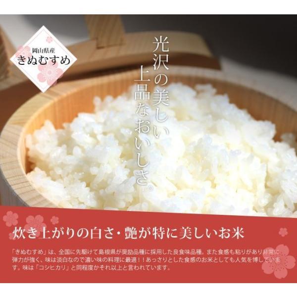 米 お米 10kg きぬむすめ 30年岡山産 (5kg×2袋) 送料無料|okaman|05