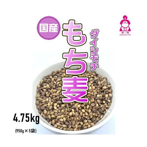 新麦 国産 もち麦 ダイシモチ (950g×5袋) チャック付 令和元年岡山県産 お買い得パック|okaman