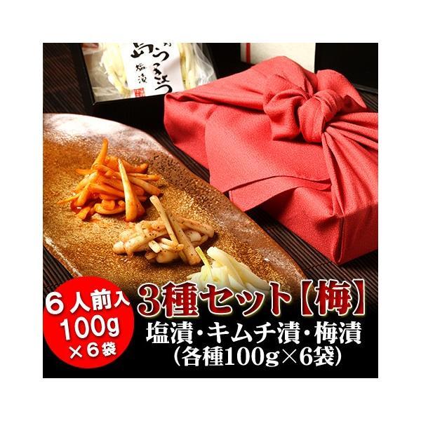 島らっきょう 塩漬け 塩らっきょう 沖縄 グルメ 100g×6袋 お取り寄せ ギフト
