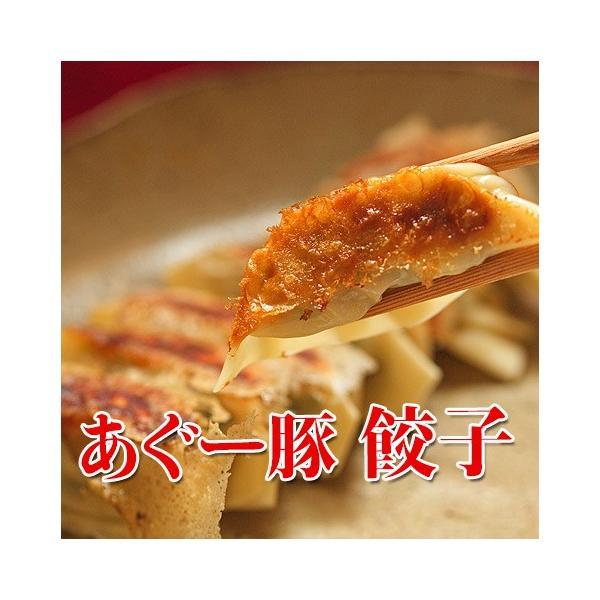 沖縄 アグー豚 あぐー豚 餃子 ぎょうざ 12個入 5パックセット