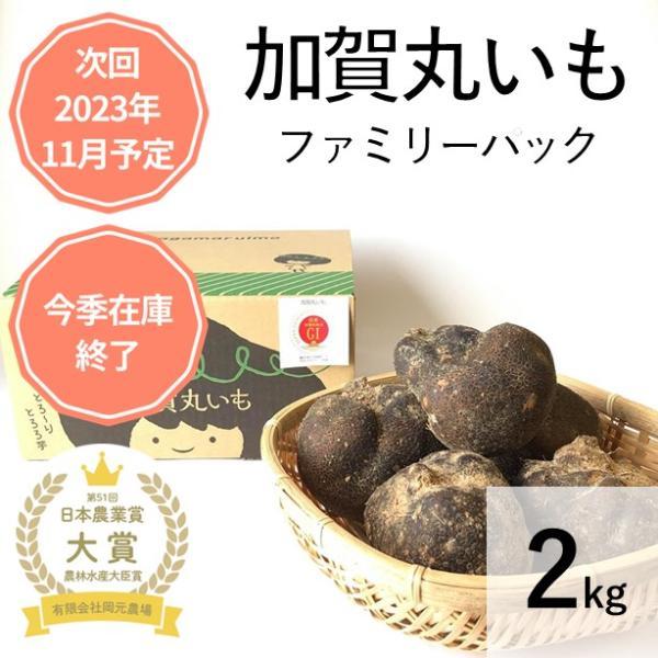 令和元年産 加賀丸いも ファミリーパック レシピ付き GI認証 希少野菜 生産農家 直送便 ギフト S〜Mサイズ