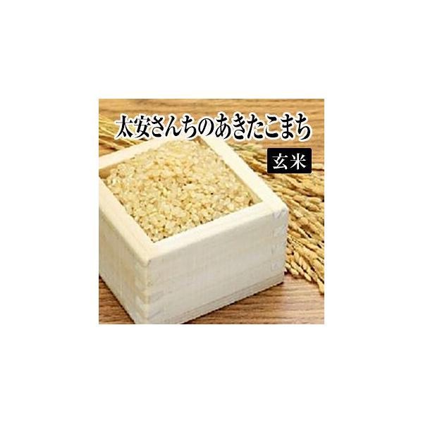 令和元年産生産者特定米 太安さんちのあきたこまち(玄米)2kg(お試し)  送料無料(一部地域を除く)