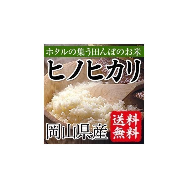 ほたるの集う田んぼのお米 岡山県産ヒノヒカリ(白米)10kg(5kg×2袋) 送料無料(一部地域を除く)