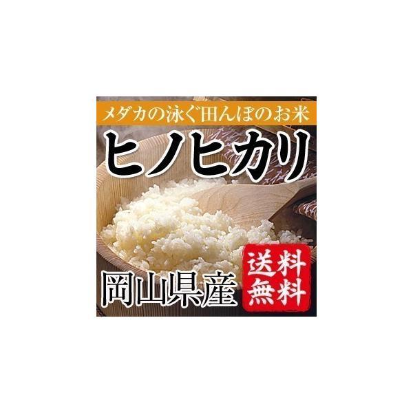 めだかの泳ぐ田んぼのお米 岡山県産ヒノヒカリ(白米)20kg(5kg×4袋) 送料無料(一部地域を除く)