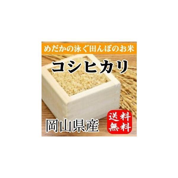 めだかの泳ぐ田んぼのお米 岡山県産コシヒカリ(玄米)10kg(5kg×2袋) 送料無料(一部地域を除く)