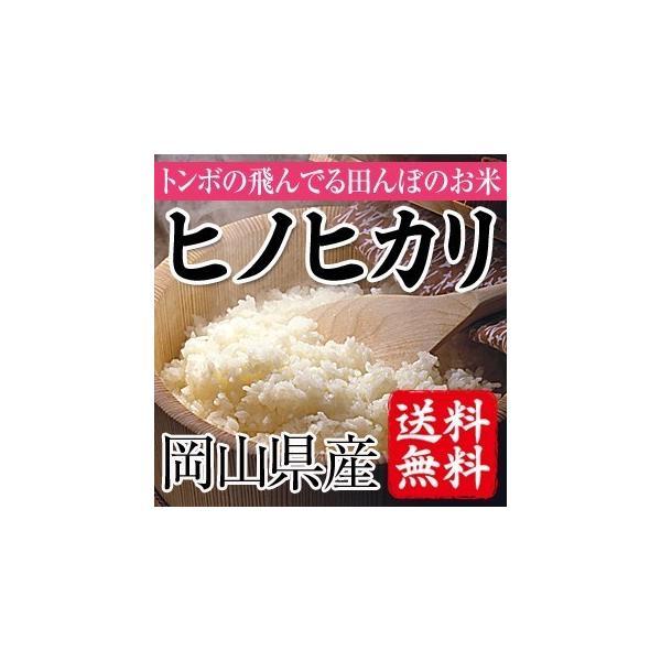 とんぼの飛んでる田んぼのお米 岡山県産ヒノヒカリ(玄米)2kg(お試し) 送料無料(一部地域を除く)