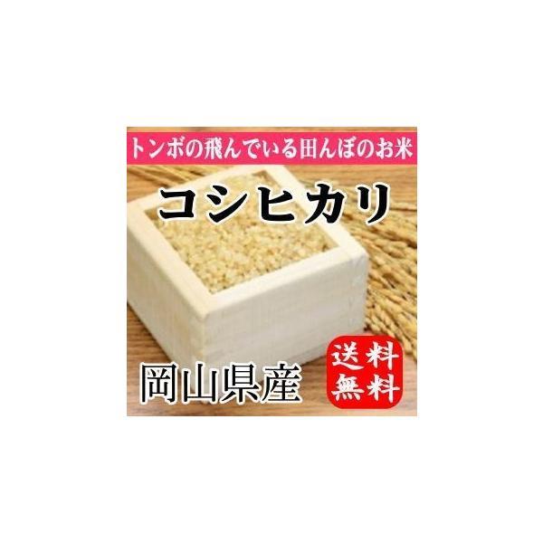 とんぼの飛んでる田んぼのお米 岡山県産コシヒカリ(玄米)10kg(5kg×2袋) 送料無料(一部地域を除く)