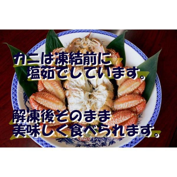 毛ガニ 北海道産 約570g 一尾入り ボイル済 ギフト カニ かに 蟹 001|okhotsk-ajikikoh|05