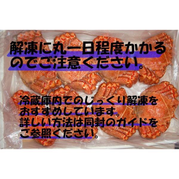 毛ガニ 北海道産 約450g×2尾入り ボイル済 送料無料 カニ かに 蟹 016×2 okhotsk-ajikikoh 06