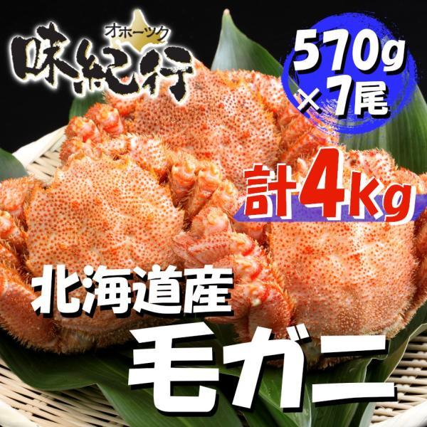 毛ガニ 北海道産 約570g×7尾入り 計約4kg ボイル済 ギフト 送料無料 カニ かに 蟹