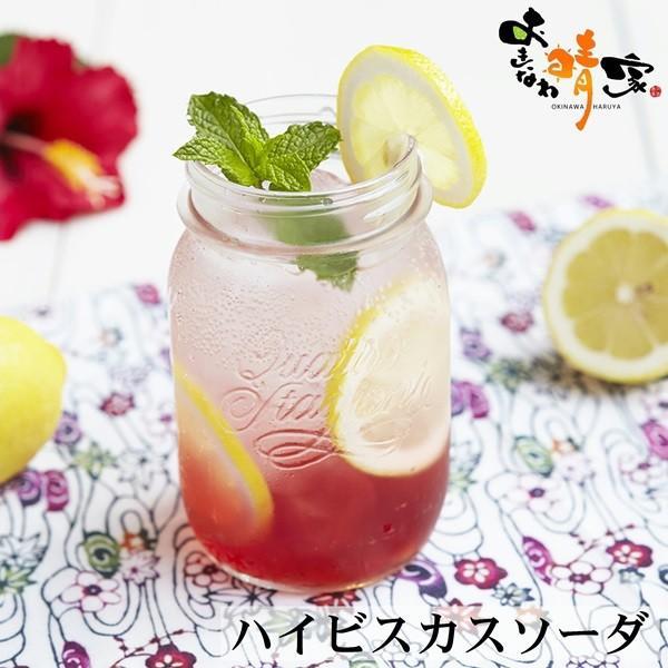 Beni ( ハイビスカス ジュース 沖縄産 ) 500ml×12本 okinawaharuya 03