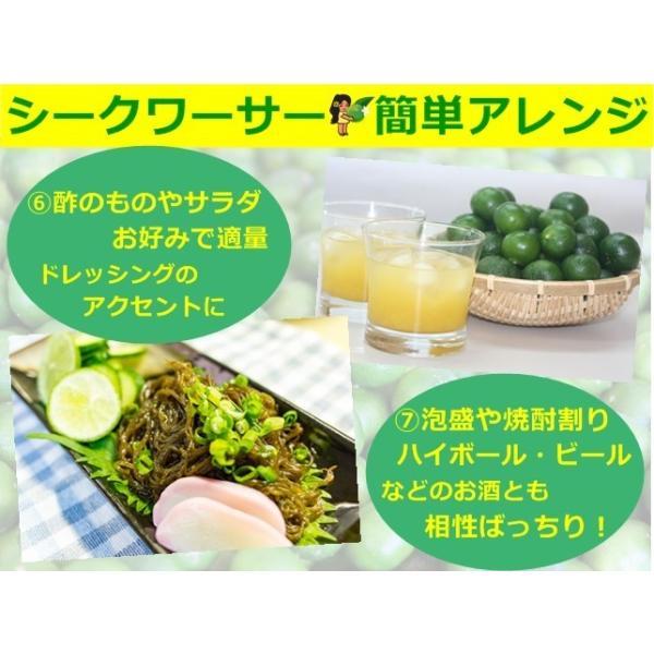 青切り シークヮーサー 原液 シークワーサー ストレート ジュース 500ml 沖縄産 大宜味村 果汁100% ノビレチン 美肌  ダイエット シミ対策 タンゲレチン|okinawalover|11