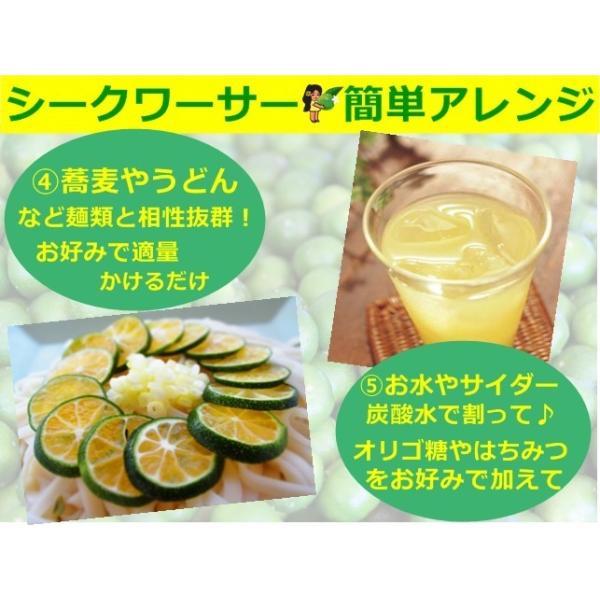青切り シークヮーサー 原液 シークワーサー ストレート ジュース 500ml 沖縄産 大宜味村 果汁100% ノビレチン 美肌  ダイエット シミ対策 タンゲレチン|okinawalover|10