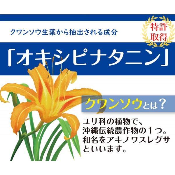 休息サプリ 特殊アミノ酸オキシピナタニン[クワンソウエキス] [睡眠改善剤で特許取得] ぐっすりん 1箱 20日分|okinawasakata|04