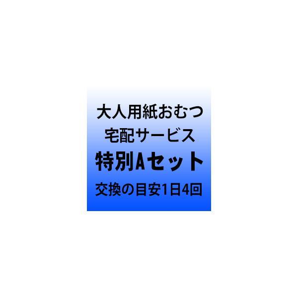 大人用紙おむつ宅配サービス 特別Aセット 交換の目安1日4回|okitatami