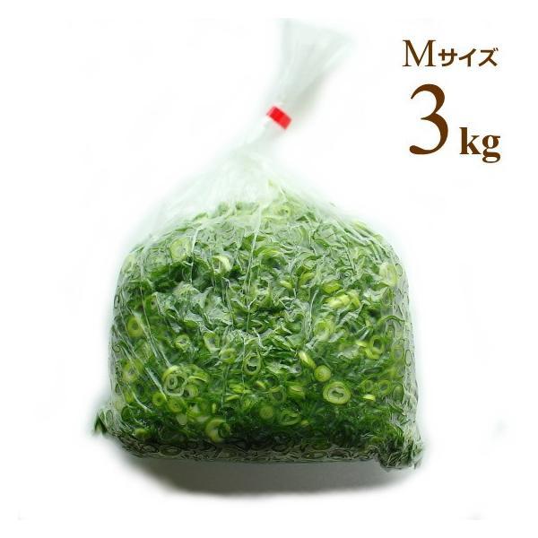 広島県産ネギ カットねぎ 青ねぎ Mサイズ 3kg 業務用食材 仕入れ ネギ根元サイズ10-15mm