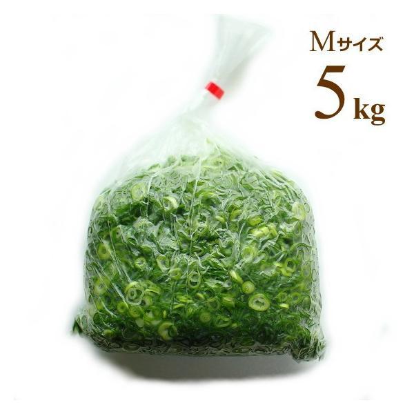 広島県産ネギ カットねぎ 青ねぎ Mサイズ 5kg 業務用食材 仕入れ ネギ根元サイズ10-15mm
