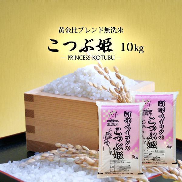 無洗米 10kg 送料無 こつぶ姫 5kg×2袋 送料無料 (一部地域を除く) 国内産 ブレンド米 お米 白米 精米