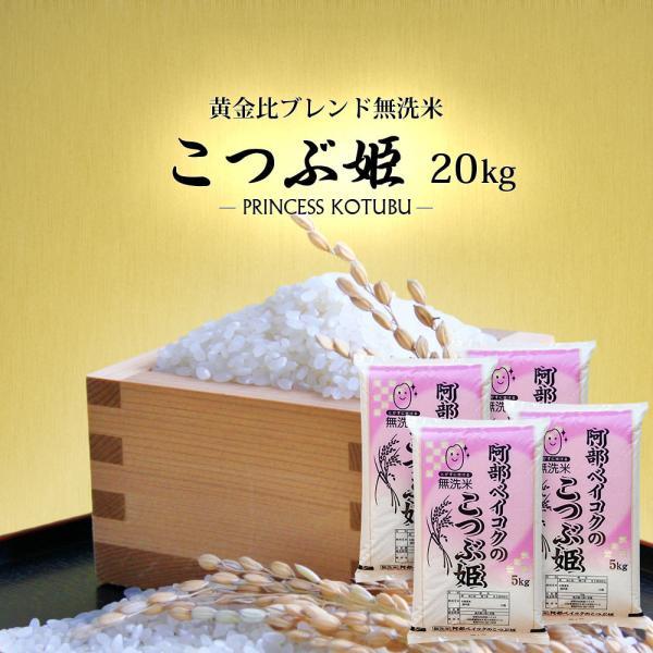 無洗米 20kg 送料無 こつぶ姫 5kg×4袋 送料無料 (一部地域を除く) 国内産 ブレンド米 お米 白米 精米