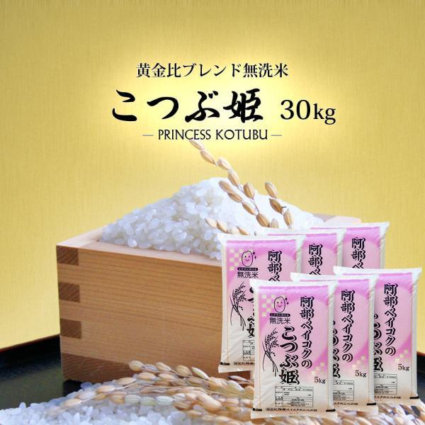 無洗米 30kg 送料無 こつぶ姫 5kg×6袋 送料無料 (一部地域を除く) 国内産 ブレンド米 お米 白米 精米