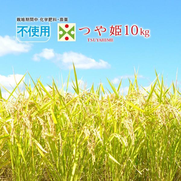 無農薬 米 10kg 山形県 つや姫 (5kgX2袋) 合鴨農法 特別栽培米 (玄米・白米・無洗米)精米方法選べます