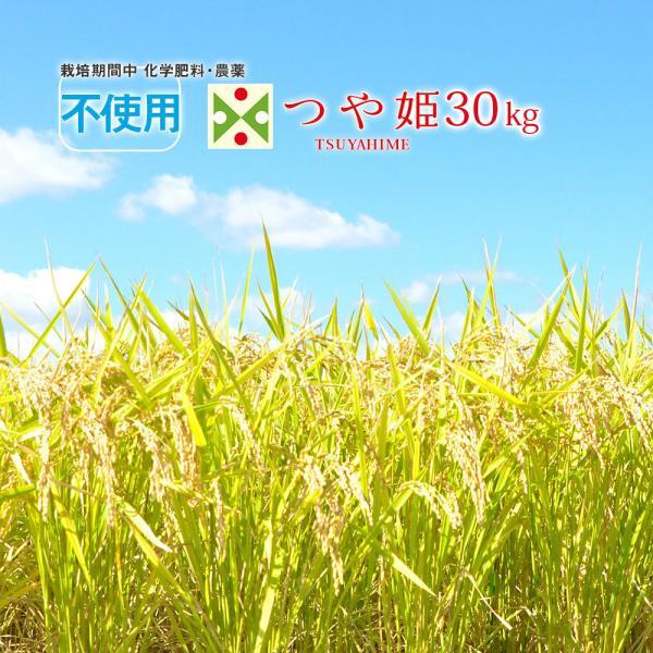 無農薬 米 30kg 山形県 つや姫 合鴨農法 特別栽培米 (玄米・白米・無洗米)精米方法選べます (精米後約27kg)