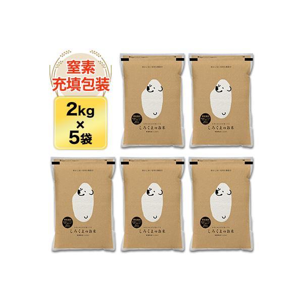 新米 白米 10kg 新潟県産 コシヒカリ 10kg(2kg×5袋)令和3年(2021年) 米袋は真空包装【即日出荷】