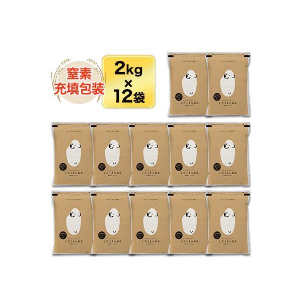 新米 白米 24kg 新潟県産 コシヒカリ 24kg(2kg×12袋)令和3年(2021年) 米袋は真空包装【即日出荷】