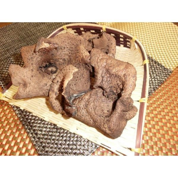国産天然きのこ(キノコ) 乾燥 香茸(獅子茸 いのはな) 50g ギフト対応