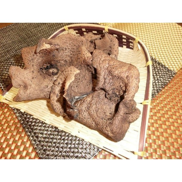 国産天然きのこ(キノコ) 乾燥 香茸(獅子茸 いのはな) 30g ギフト対応