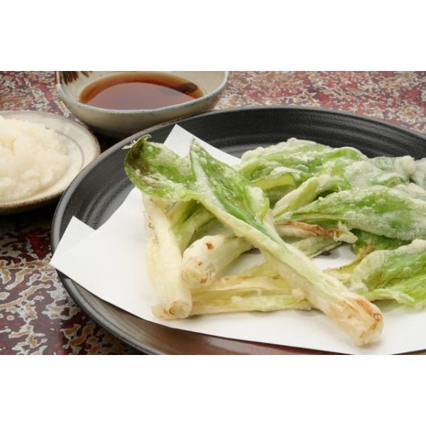 天然 山菜 山菜天ぷらセット500g 天ぷらが美味しい 春の味覚 山の幸 5,6種類を採りたて産地直送 天ぷらパーテイで食べ較べ okuaizushunsaikan-y 06